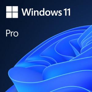 Microsoft Windows Pro 11 DSP/OEM angleški, DVD