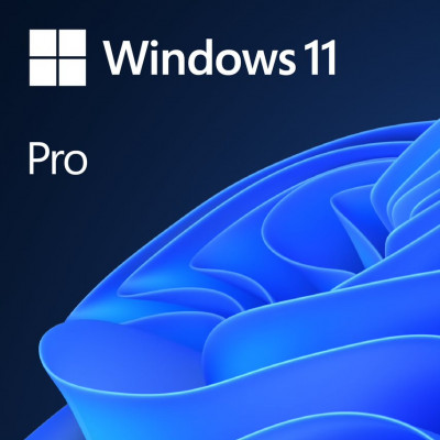 Microsoft Windows Pro 11 DSP / OEM Slovenian, DVD